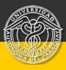 Universidad Autónoma del Paraguay
